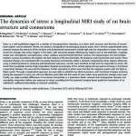 The dynamics of stress: a longitudinal MRI study of rat brain structure and connectome