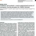 Confidence and psychosis: a neuro-computational account of contingency learning disruption by NMDA blockade