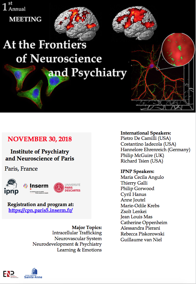 institute of psychiatry and neuroscience of paris