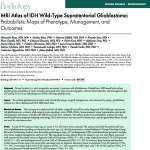 MRI Atlas of IDH Wild-Type Supratentorial Glioblastoma: Probabilistic Maps of Phenotype, Management, and Outcomes